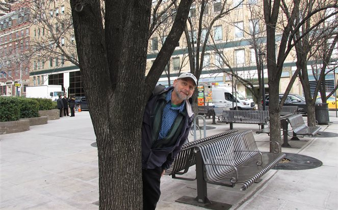 Simon and a tree in NYC